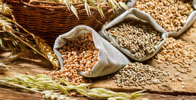 Cereales y semillas: alimentos novedosos y diferentes que hacen bien