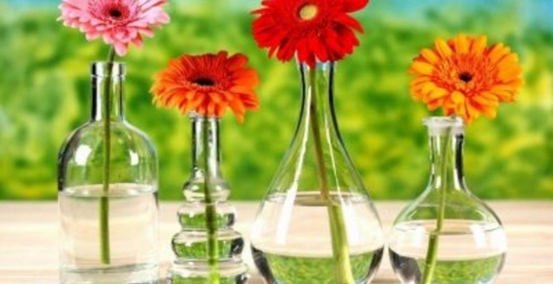 como alargar la vida de las flores