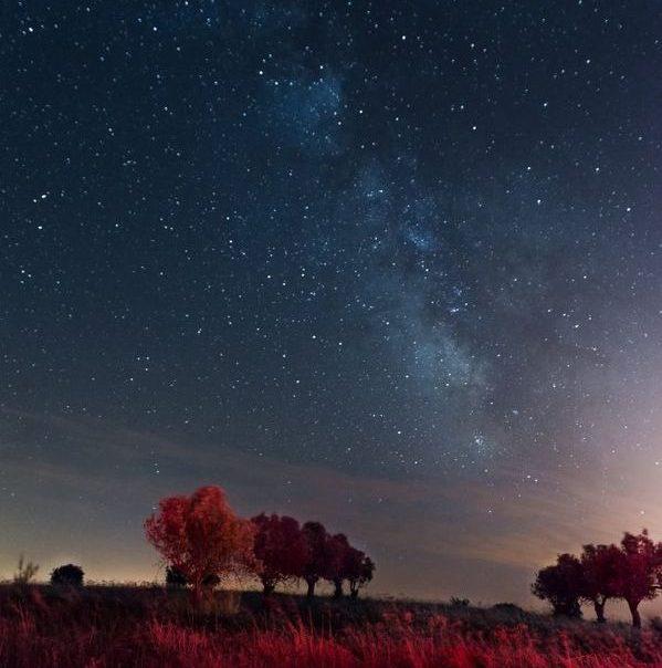 lisboa y oporto estrellas