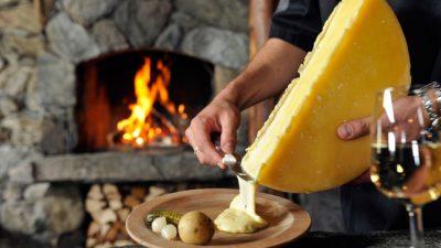 suiza quesos