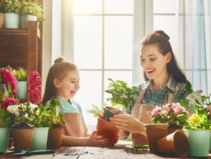 plantas para departamento
