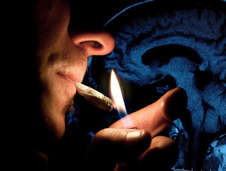 marihuana y cerebro