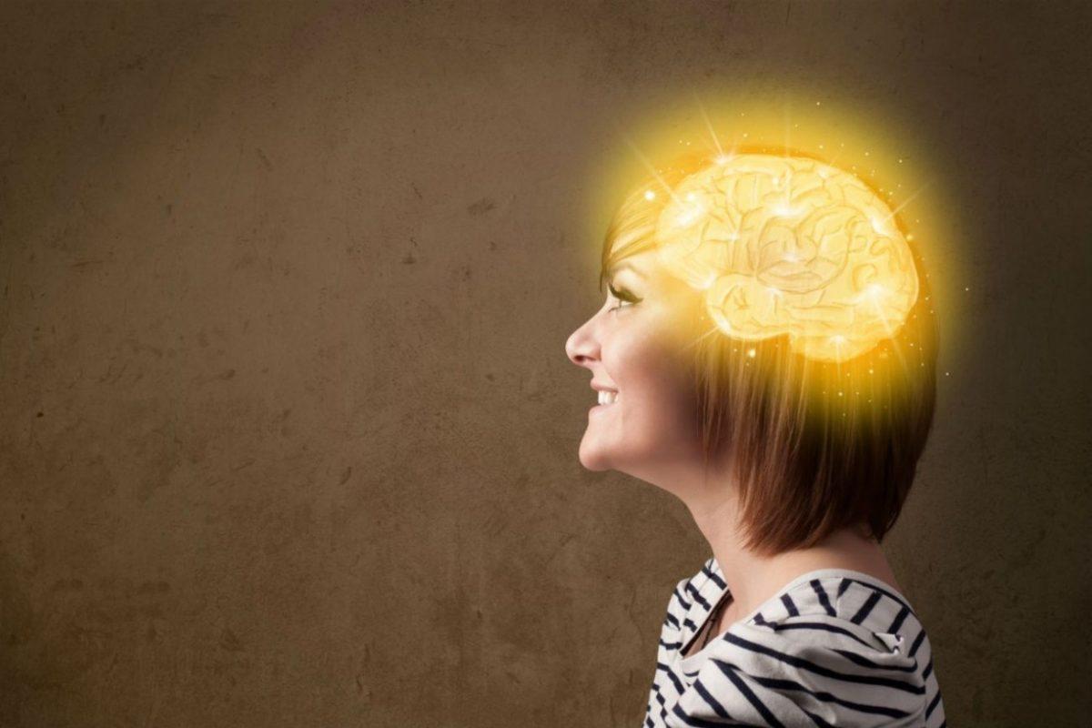 el cerebro gran simulador