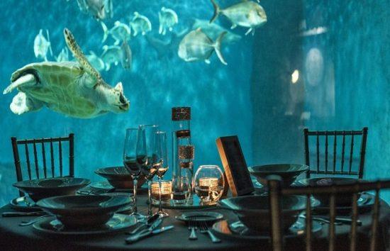 cenar en el acuario