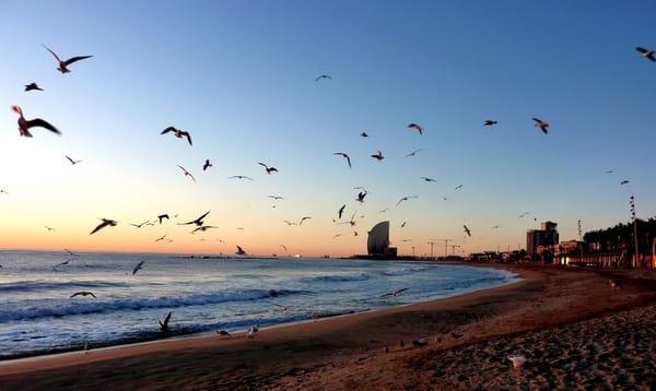 playas san sebastian