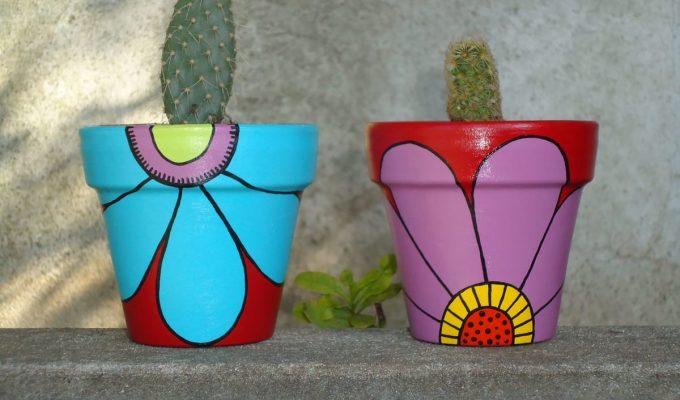 macetas para cactus