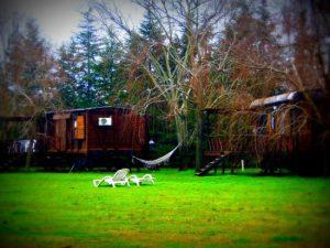 descansar en un vagon de tren de lujo