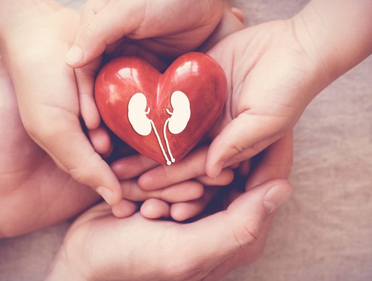 salud de los riñones