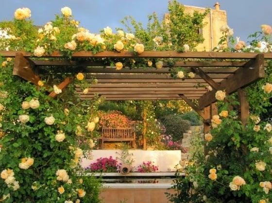 pergola con flores