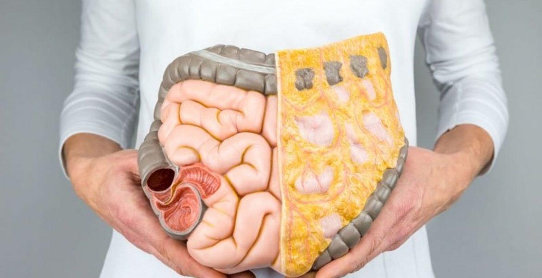 grasa corporal peligrosa