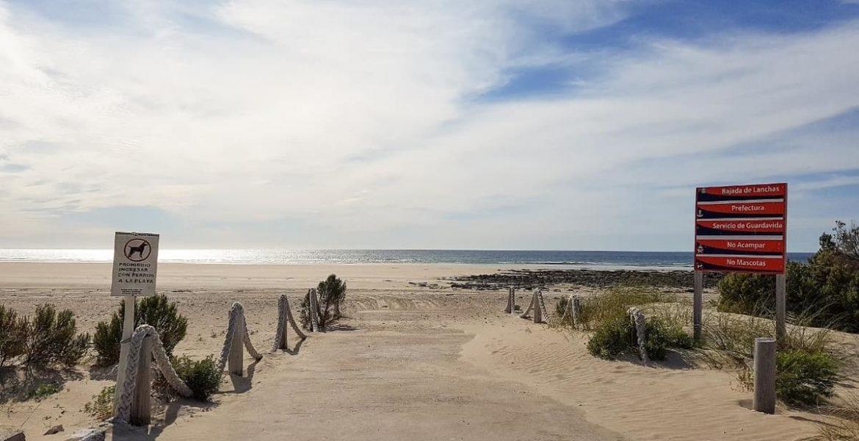 playas doradas de la patagonia