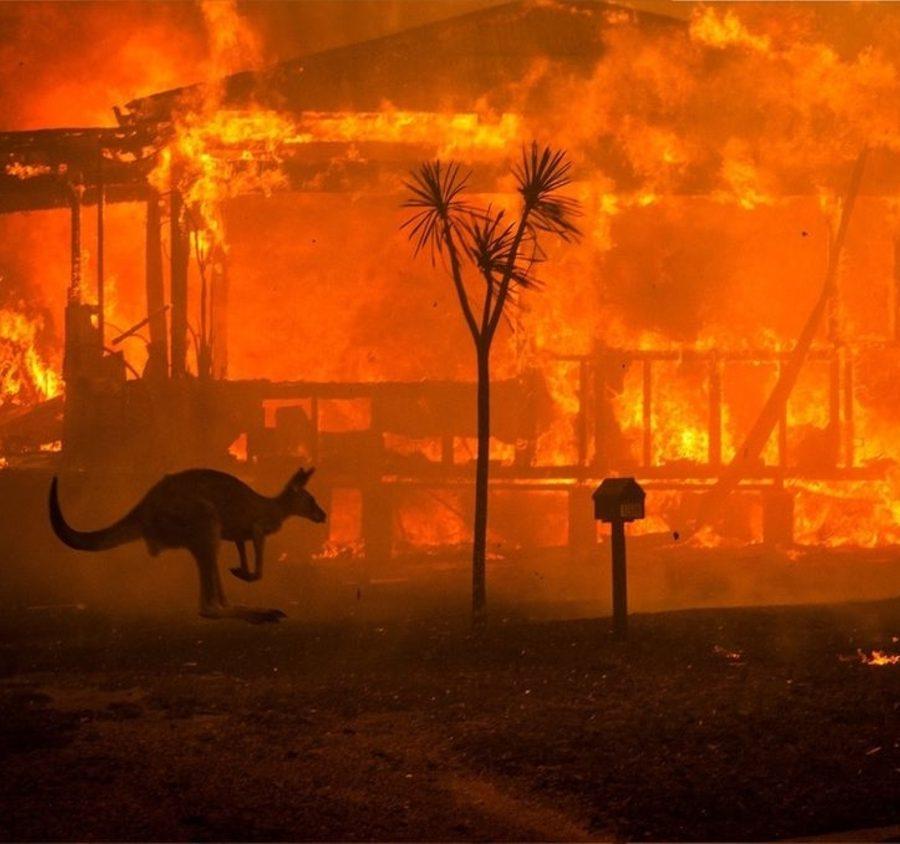 Australia cambio climatico incendios