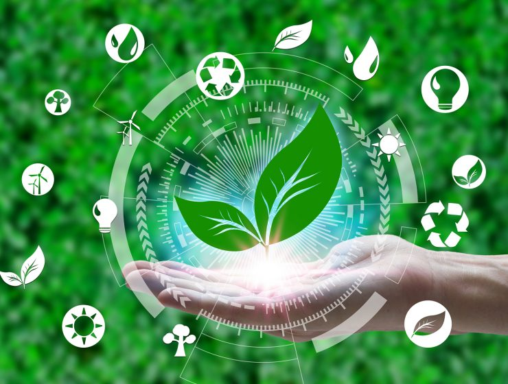 cuidar el planeta reciclar