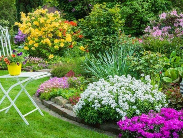 plantas de jardin