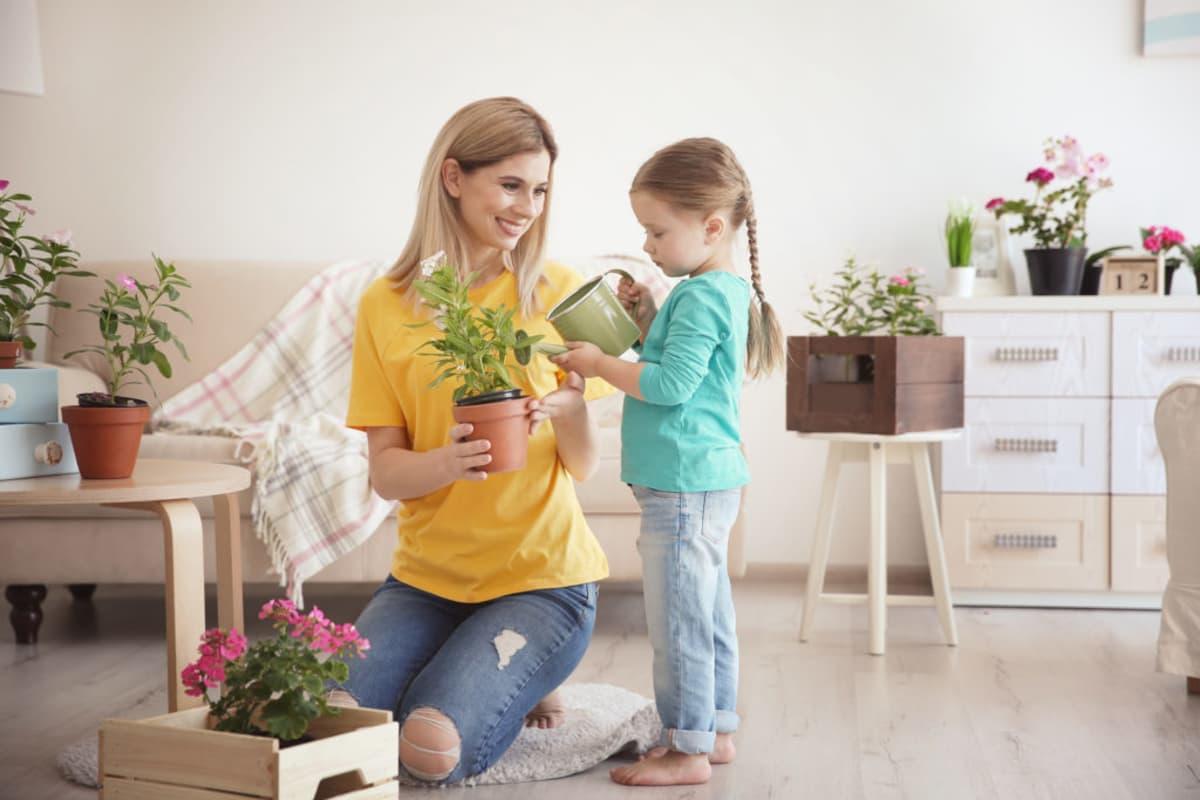plantas para jardin