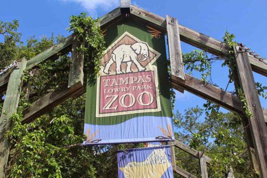 zoologico en tampa