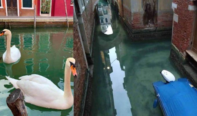 Venecia sin turismo
