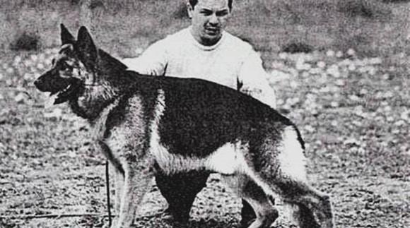 dia del perro argentina