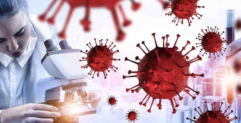 nuevo estudio coronavirus