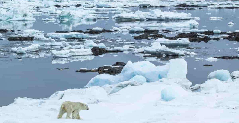 calentamiento global groenlandia