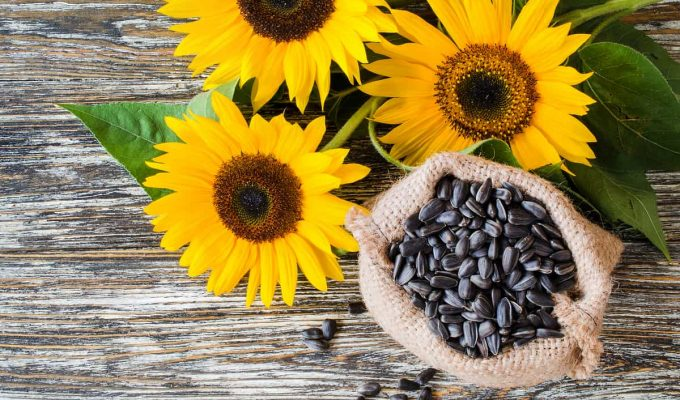 recetas con semillas de girasol