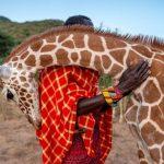venta benefica fotos donadas medio ambiente