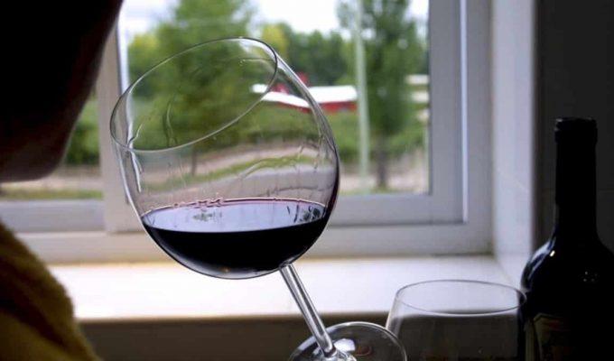 circuito del vino