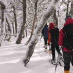 Parque de Nieve en Trevelin