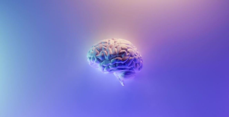 tipos de inteligencia: cerebro azul