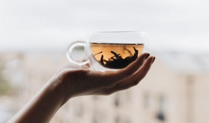 beneficios del té de boldo